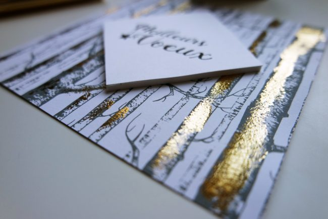 Tuto une carte de v ux qui brille brille brille le blog scrapmalin - Tuto carte de voeux ...