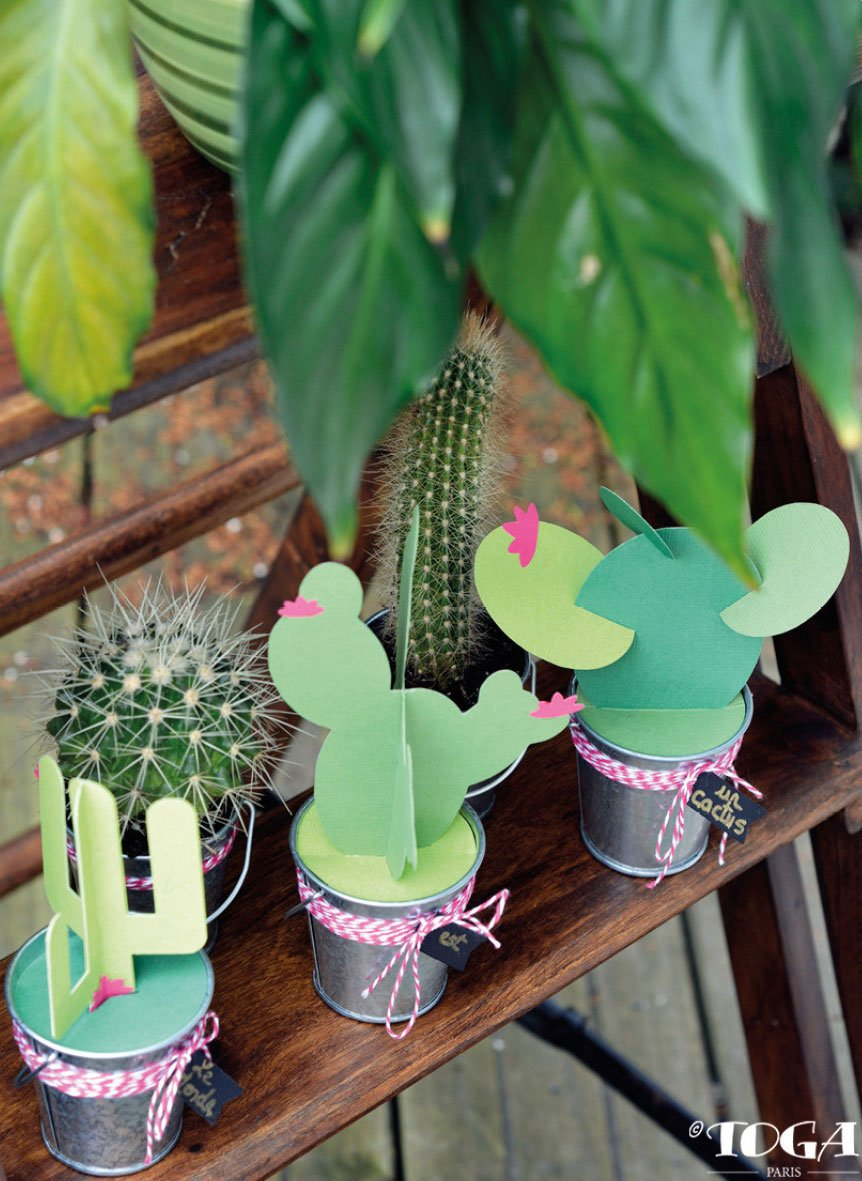 Cactus en papier | Réalisation Toga