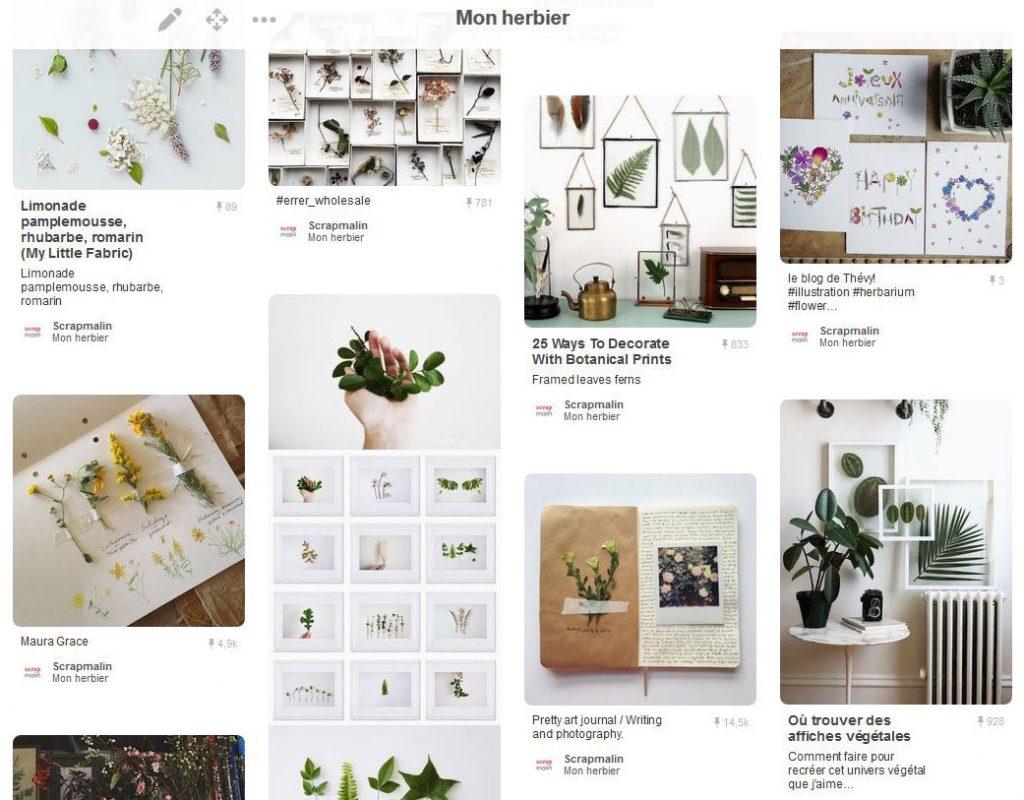 tendance : un herbier créatif – le blog scrapmalin