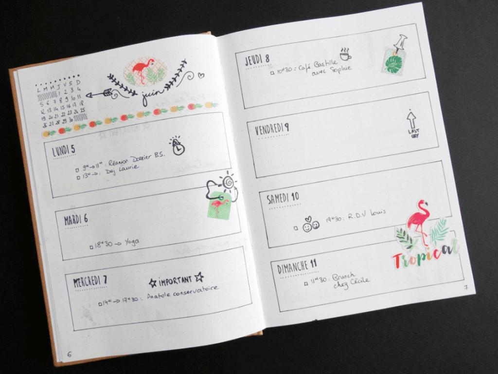 Bullet journal Toga