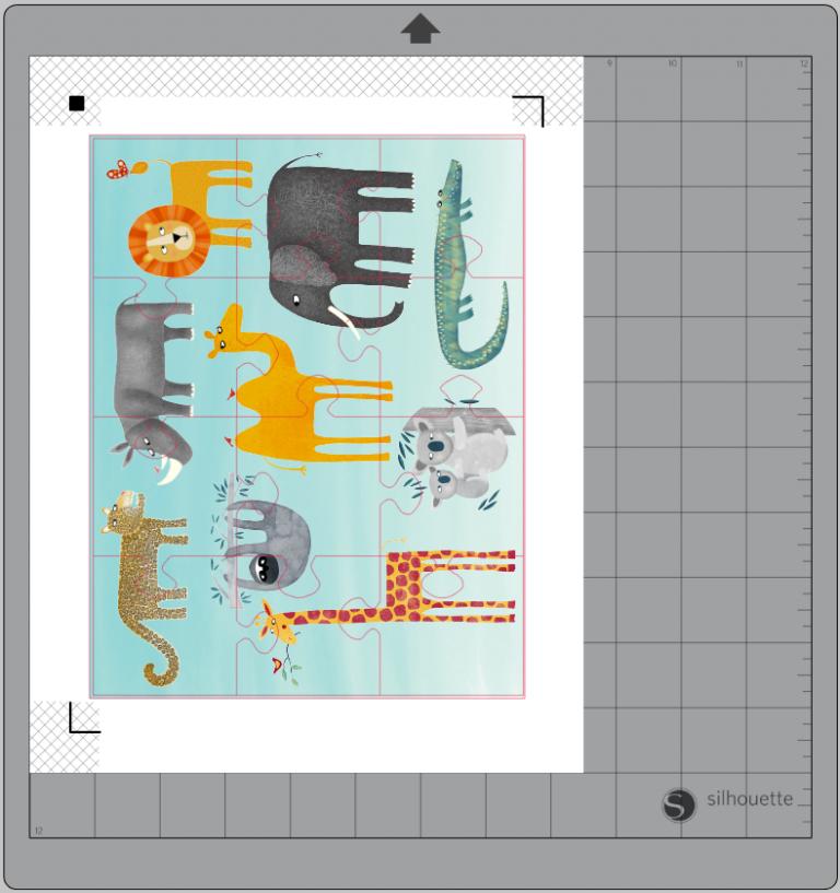 puzzle cameo